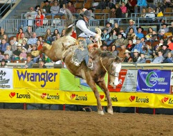 The IPRA will bring the excitement of rodeo to the fair.