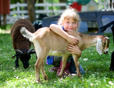 Children of all ages will love the petting zoo.