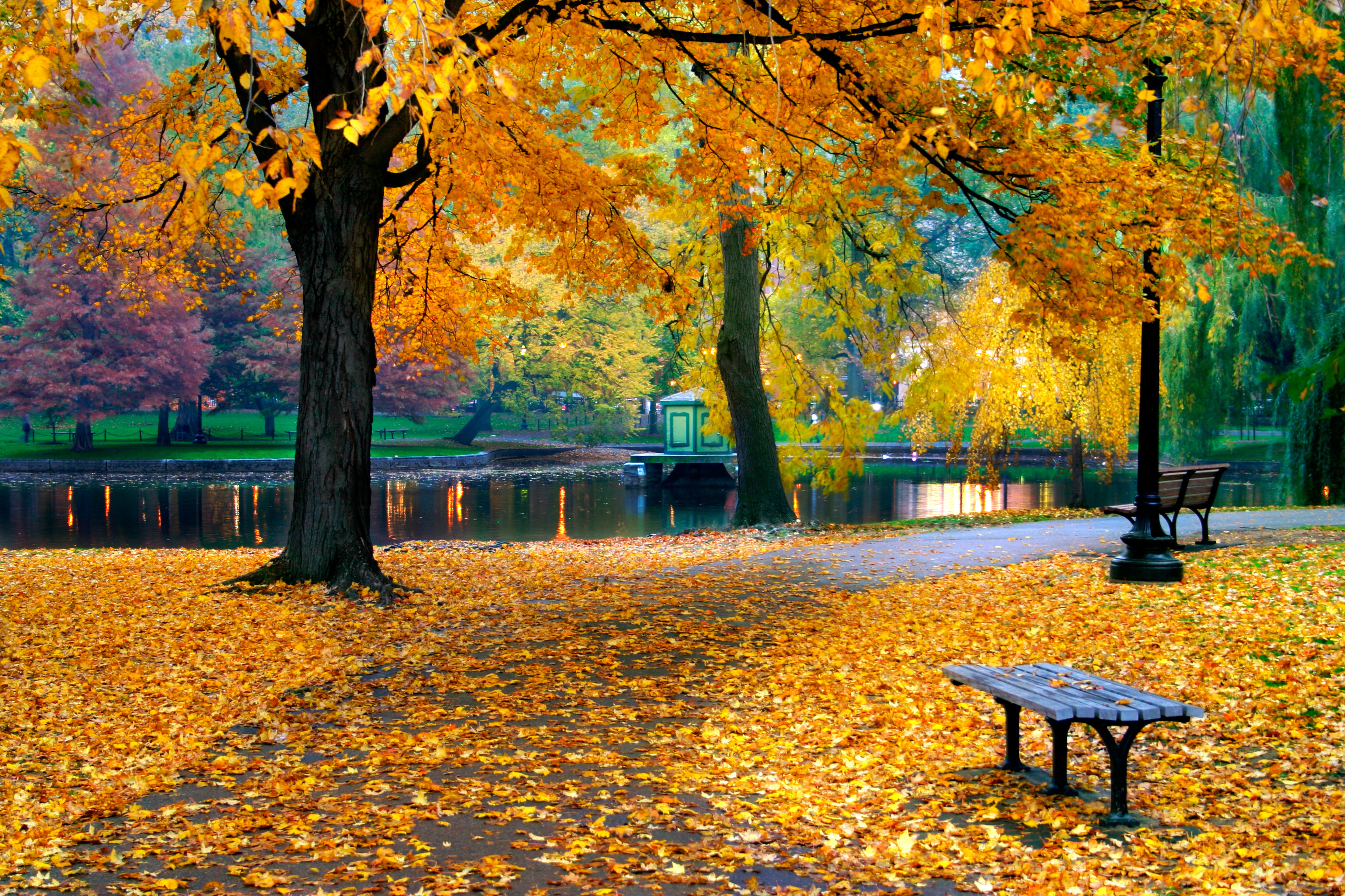 Boston in the fall events festivals sports foliage tours m4hsunfo