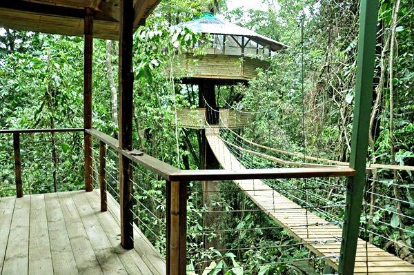 Finca-Bellavista-jungle-tree-house-community-5
