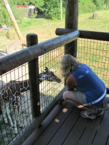 Susie Wayne stops by the Fort Wayne Children's Zoo to feed the giraffes every time she visits Fort Wayne