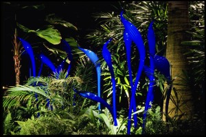 Chihuly's Blue Herons Courtesy Franklin Park Convservatory, photo by T. Rishel