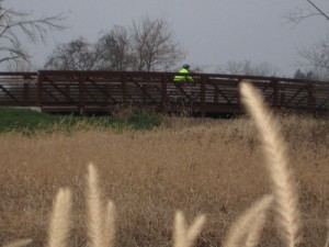 Get close to nature on the Towpath Trail.