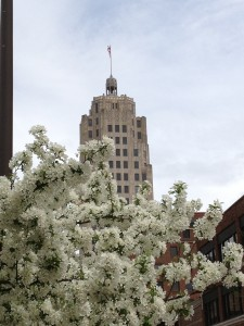 Tower Bank as seen through beautiful blooming trees on Berry St. in downtown Fort Wayne