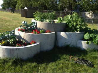 garden blog_2