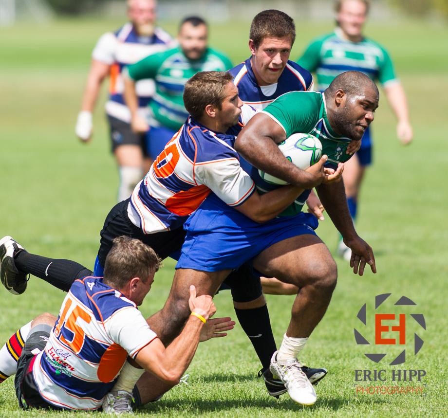 ravens rugby blog