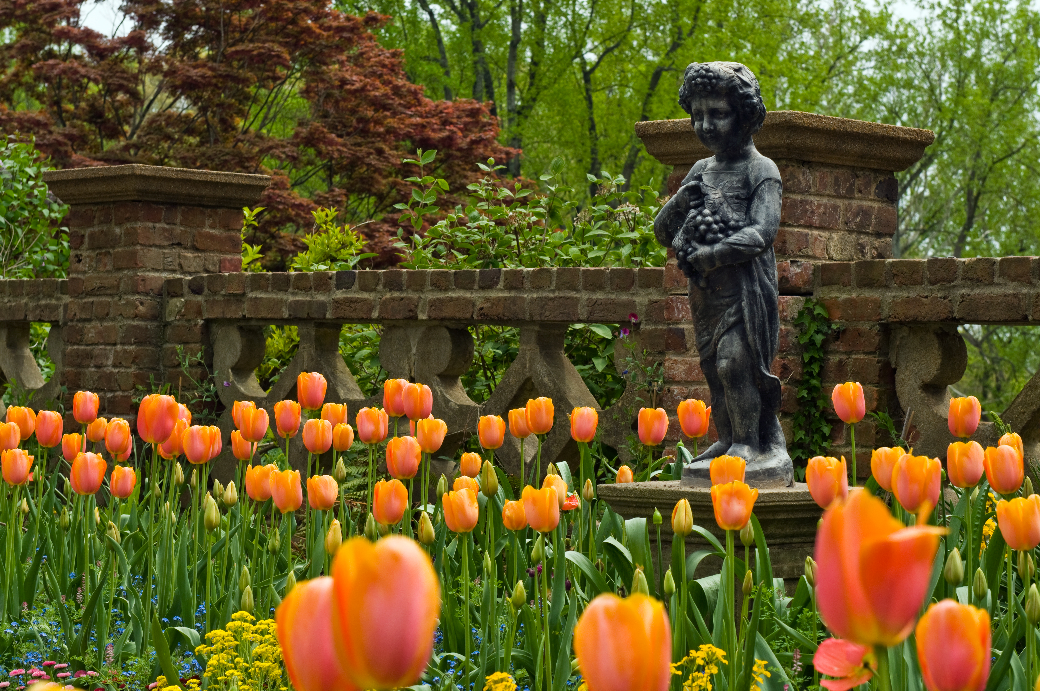 Richmond Botanical Gardens | Things to Do in Richmond