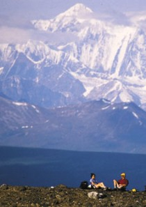 Denali, like Alaska, is huge!