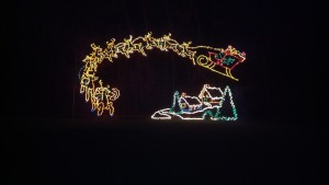 Winterland Light Display