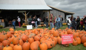 One Hendricks County family has made Beasley's Orchard their fall tradition.