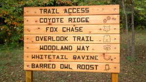 McCloud Nature Park is just one park that offers seasonal programming and hiking trails.