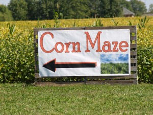 Mazes are part of the fall tradition in Hendricks County.