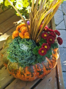 Bring the colors of fall into your home with this easy and eye-catching pumpkin planter.