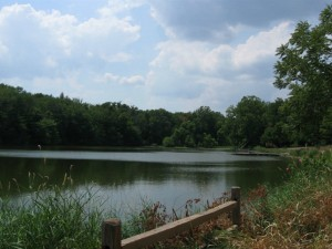 Sodalis Nature Park-- isn't this pond lovely?