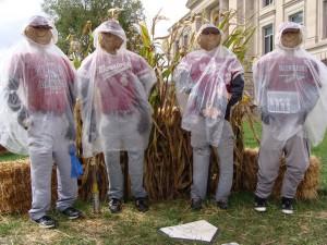 scarecrow 2013 - baseball