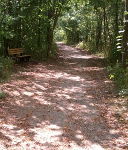 This could be one of the scenic areas you take in during a Summer Fun Run!