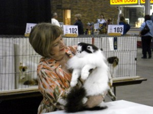 Indy Cat Club CFA Cat Show is October 26-27.