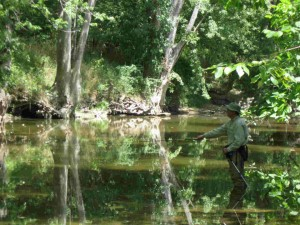 Fly Fishing at McCloud Nature Park in Hendricks County