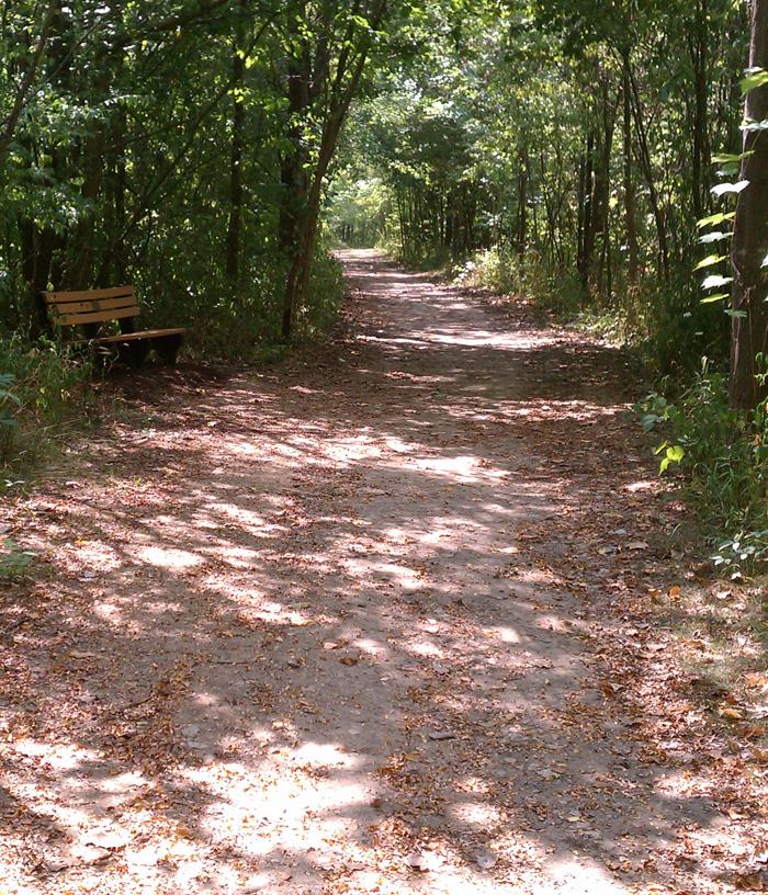 Nature Park Plainfield In