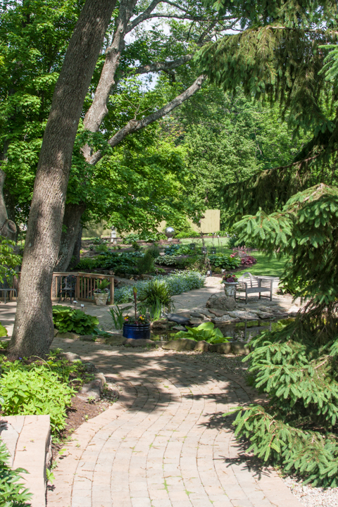 One of the first areas you see as you enter the permanent area of Avon Gardens, a quiet gathering place lies in the shade over a gurgling creek.