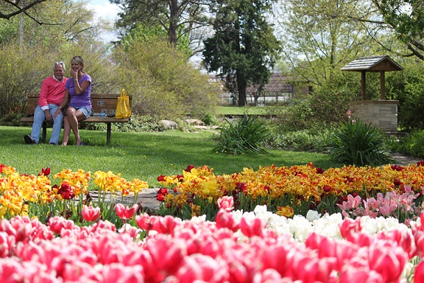Tulip Time at Gage Park