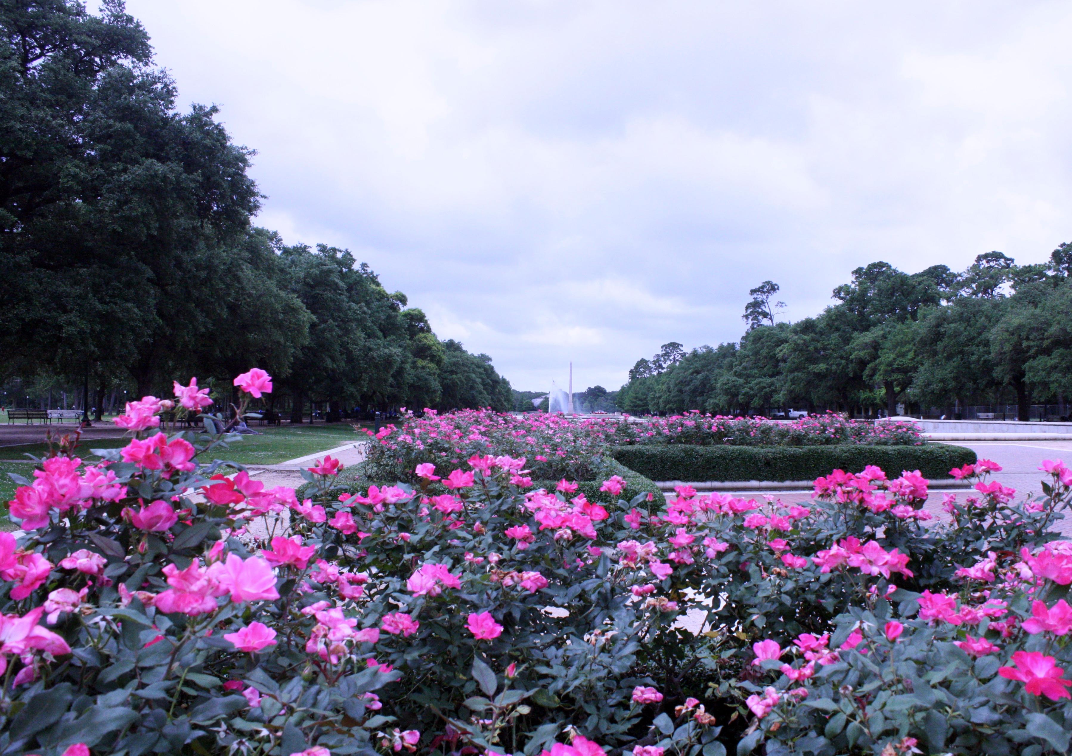 Yo Mariana - Hermann Park