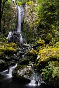 Lower Kentucky Falls by Jeff Dimmick
