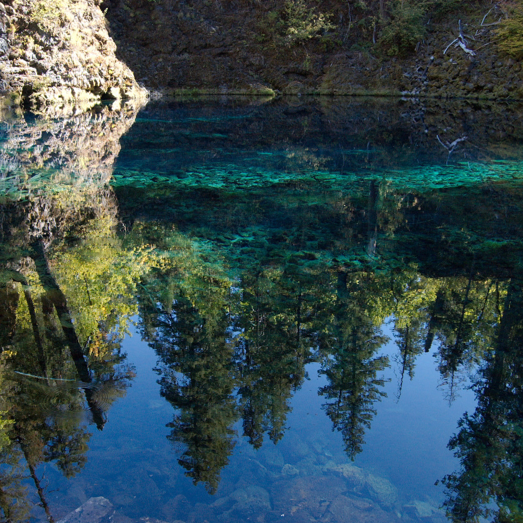 Tamolitch Falls (aka Blue Pool) is along the McKenzie River Trail. Image credit: prw_silvan via Flickr