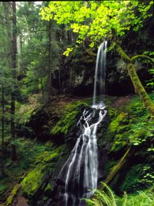 Upper Trestle Falls by Jeff Green