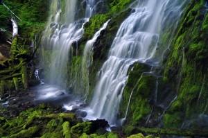 Lower Proxy Falls By Greg Leif
