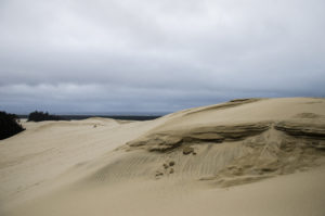 dunes(4)