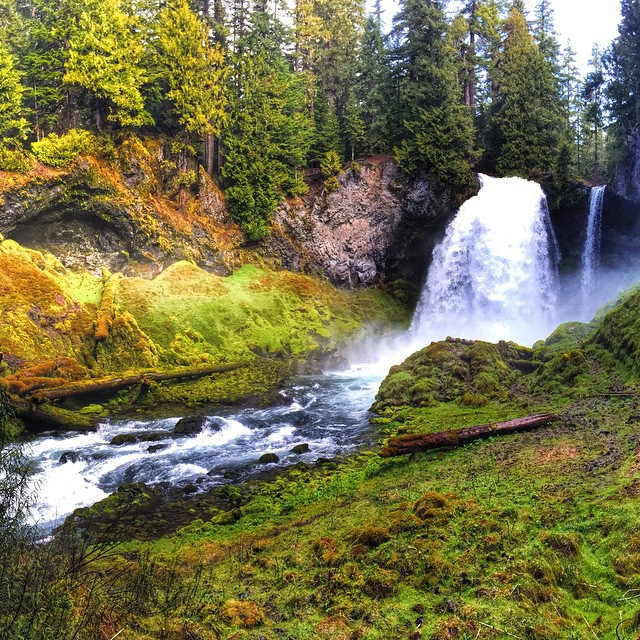 Joey's beautiful shot of Sahalie Falls.