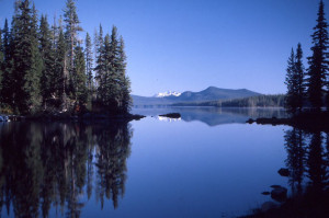 Waldo Lake Wilderness
