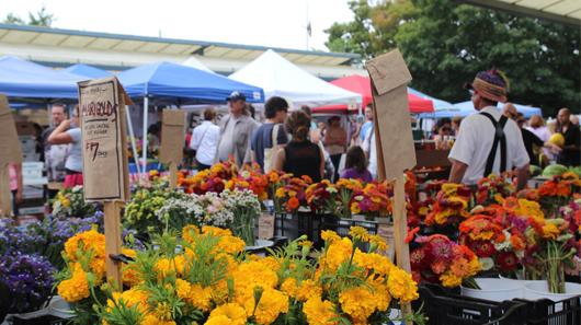 Bloomington Farmers Market