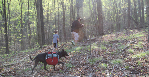 Hiking in Bloomington