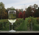 Butler Wine Glass Fall