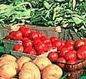 Bloomington Farmers' Market