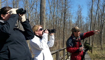 Birding - Pointing out a woodpecker