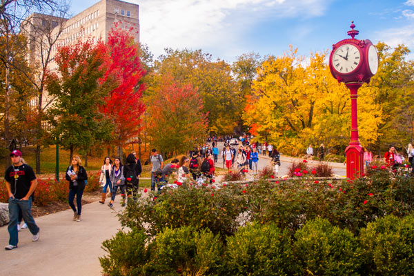 IU campus fall