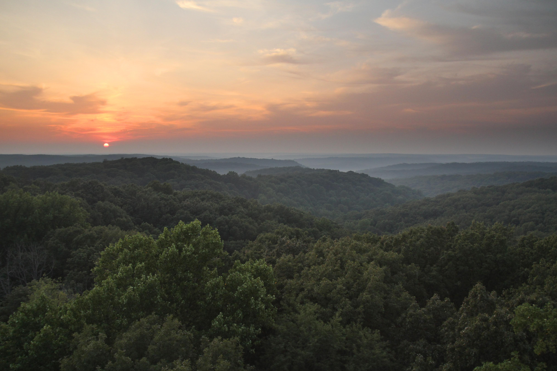 Firetower Hoosier National Forest