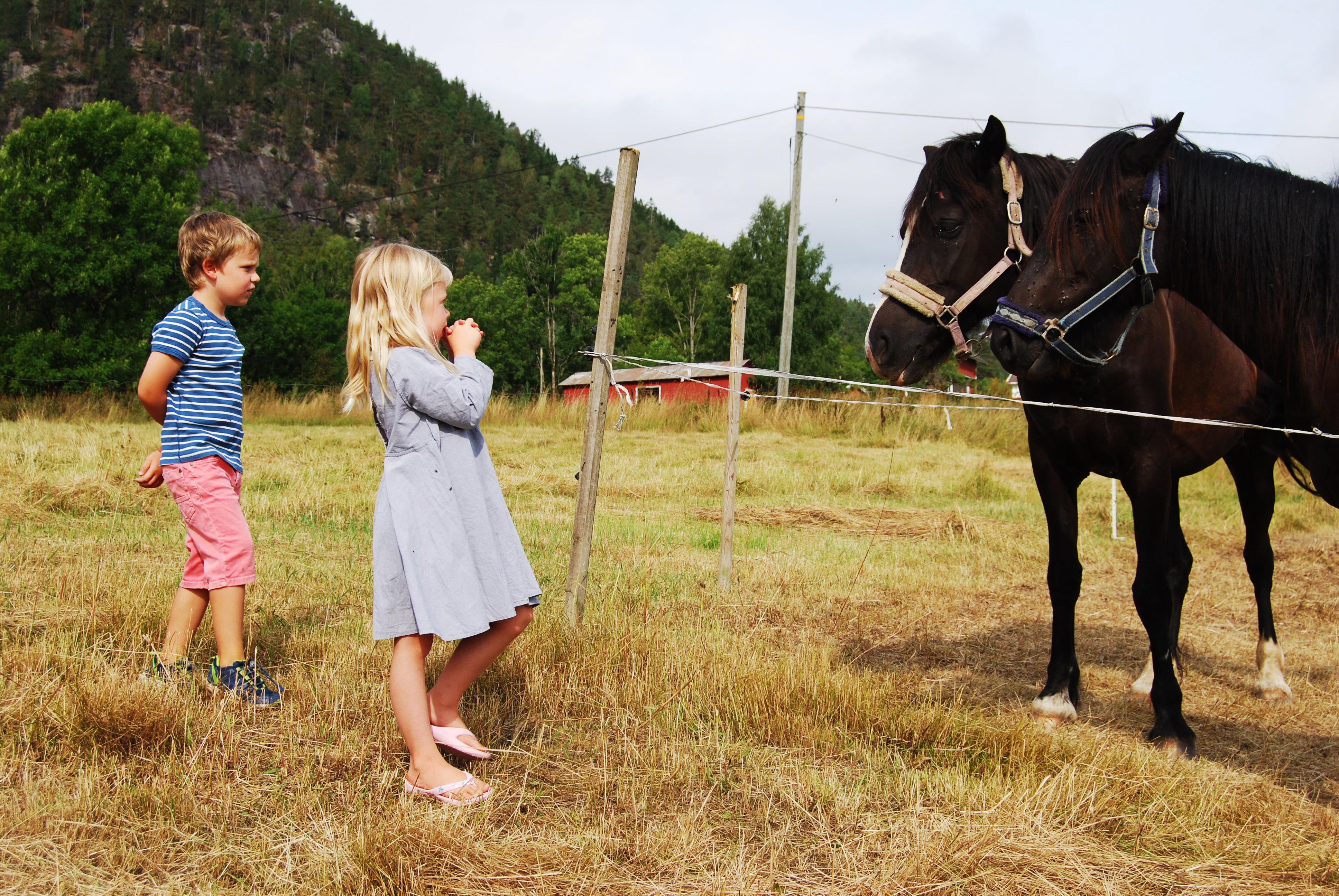 Kristian (8) og Ingrid (7) på gårdsbesøk i Telemark.