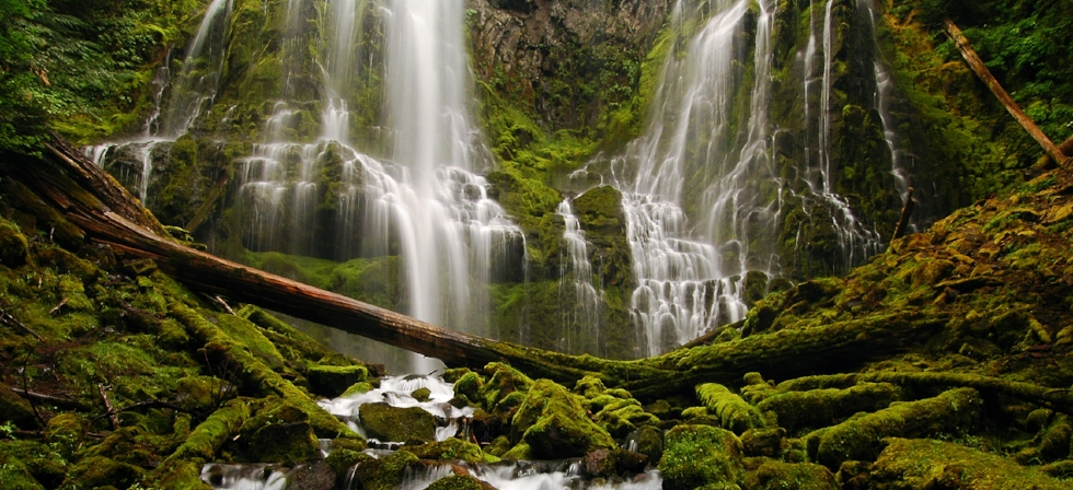 Image result for Proxy falls, Oregon