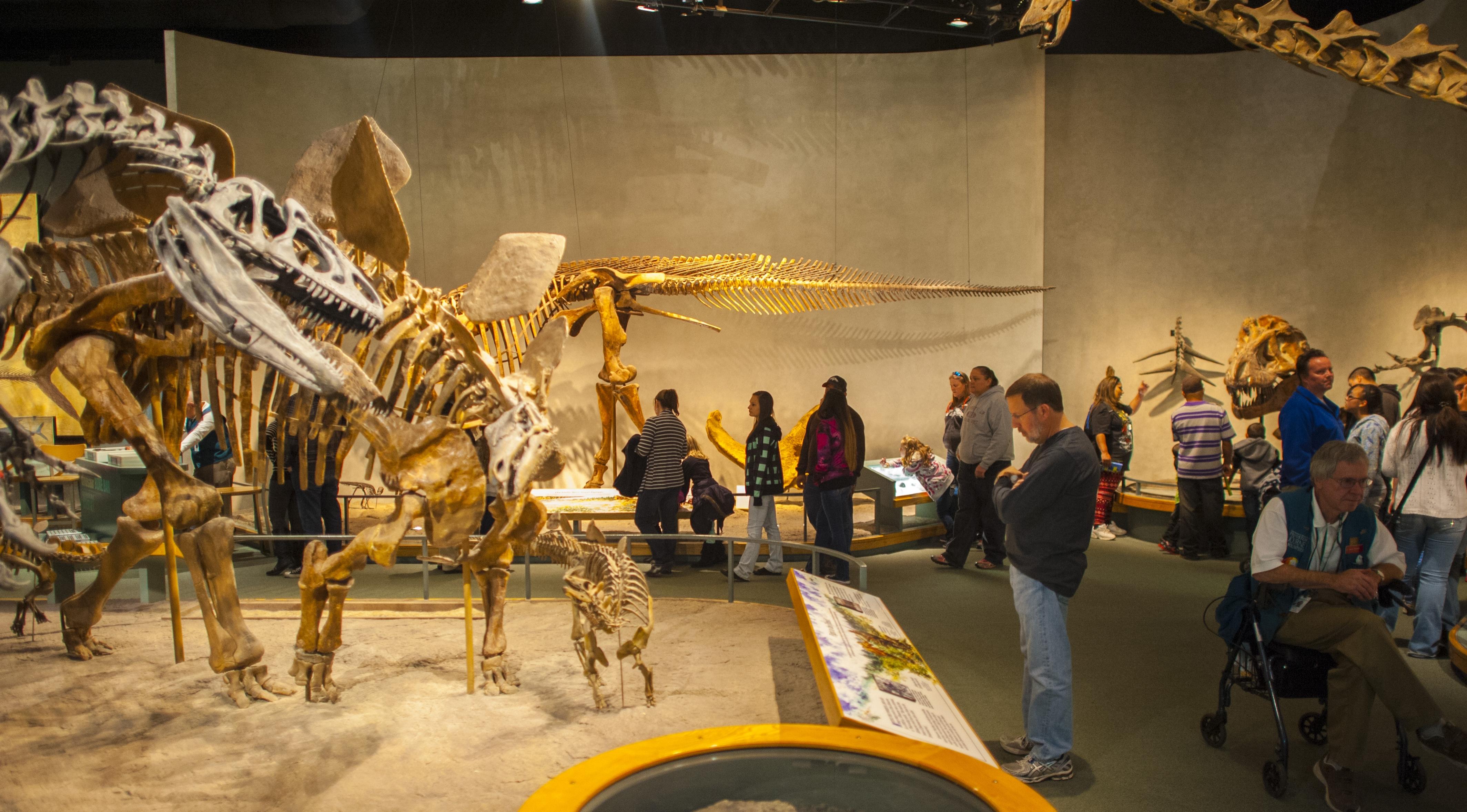 Denver Arts Week Night at the Museums | VISIT DENVER