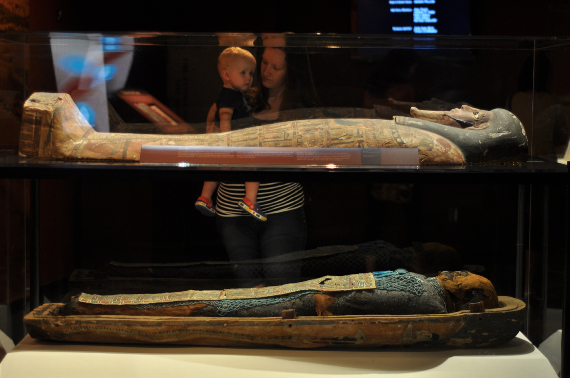 mummies of the world hmns