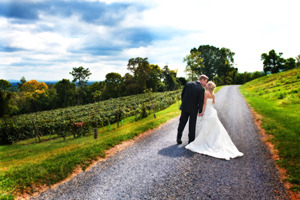 Wedding at Bluemont Vineyard