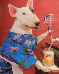 Craft beer is the new top dog.
