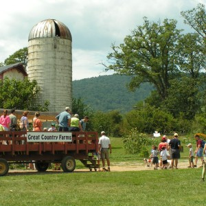 Great Country Farm Festival