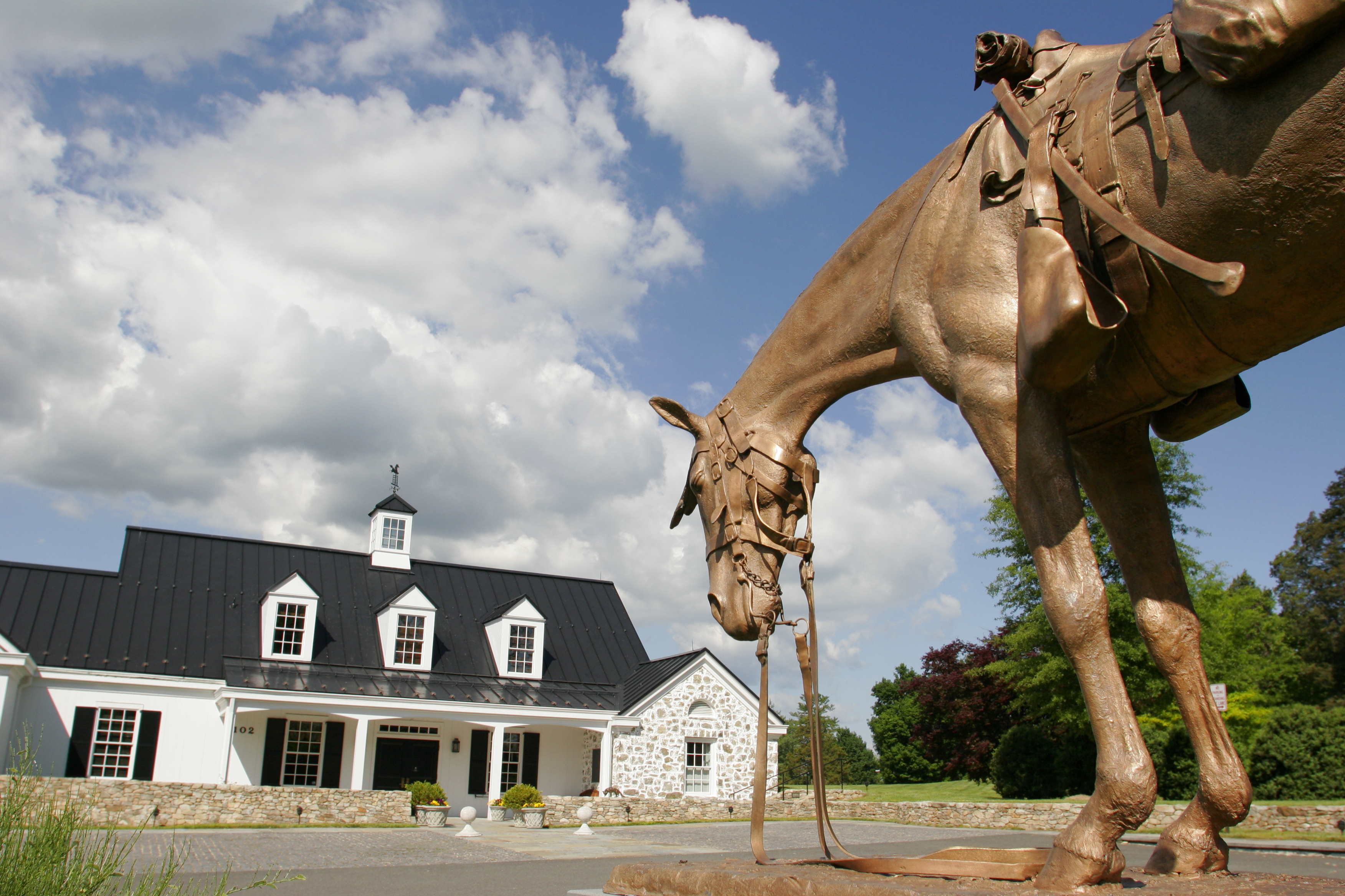 Virginia, Middleburg, National Horse and Hound Sporting Library, Civil War Horse and Mule Memorial, statue,