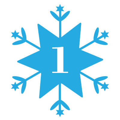 Snowflake #1