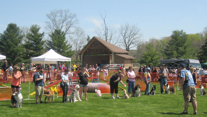 The John DeBella Dog Walk at Green Lane Park.